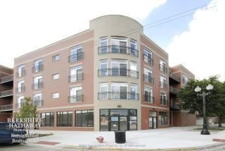 2520 South Oakley Avenue #207, Chicago IL