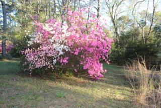 4709 Masonboro Loop Road, Wilmington NC