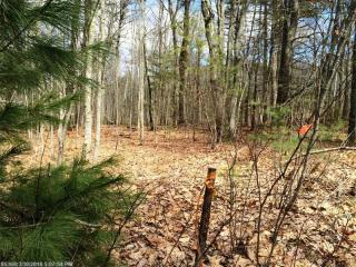 Lot 1B Captain John Parker Road, Phippsburg ME