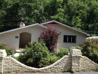 1911 Lovers Gap Rd, Vansant, VA 24656