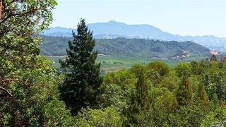6445 Mountain View Ranch Road, Healdsburg CA