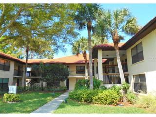 811 Hammock Pine Boulevard, Clearwater FL