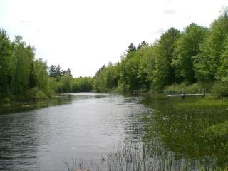 Lot 6 Fish Lake Lane, Pelican WI