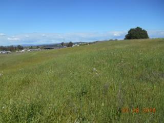 9735 Joyce Lane, Loma Rica CA