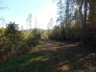 Chestnut Oaks Highway 294, Murphy NC