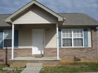 116 Gray Squirrel Ln, Seymour, TN 37865