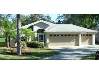 13610 Plantation Lake Circle, Hudson FL