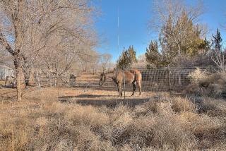 Camino De Suerte Northwest, Albuquerque NM