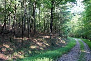 River Ridge Lane, Blue Ridge GA