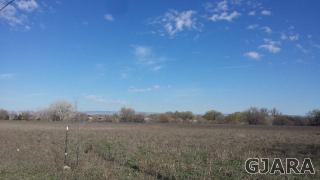 1196 17 Road, Fruita CO