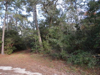 Lot 3 County Road 26, Magnolia Springs AL