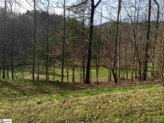 106 Buck Creek Trail, Travelers Rest SC