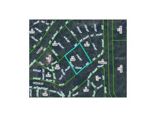 Olive Street, Brooksville FL