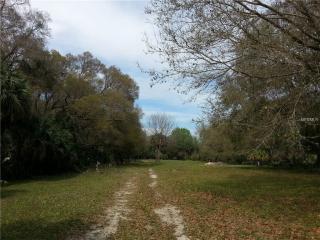 150 County Line Ditch Road #acres, Oak Hill FL