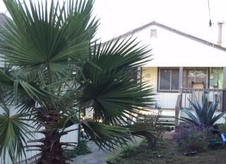 325 Lowell Street, San Francisco CA