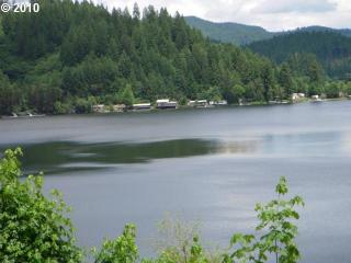 2 Lakes Road #12, Triangle Lake OR