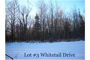 6440 South County Road A #3, Superior WI
