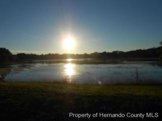 Falmouth Court #220, Spring Hill FL