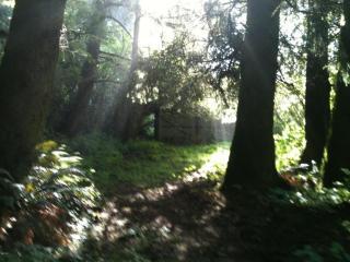 5582 Tenmile Creek Road, Yachats OR