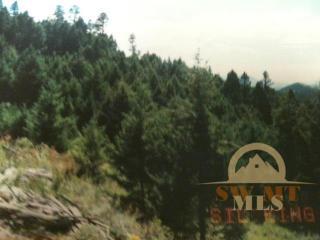Broken Spoke Trail, Basin MT