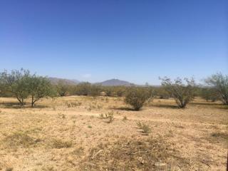 14XX East Red Range Way, Phoenix AZ