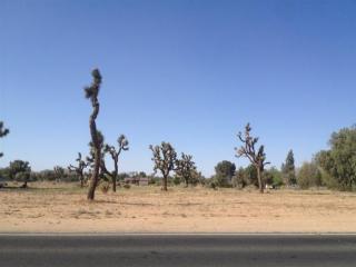 Hopi, Apple Valley CA