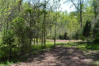 Motsinger Farm Lane, Kernersville NC