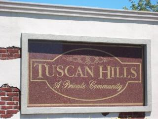 24510 Tuscany Drive, Monee IL