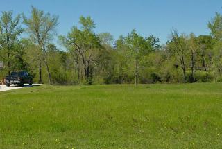 1718 Opal Trail, Willis TX