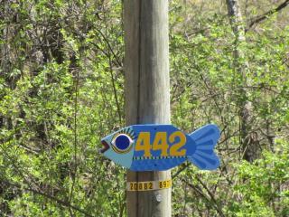445 Elk Lake Resort Road #442, Owenton KY