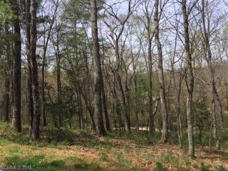3 Deep Creek Trail #51A, Arden NC