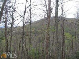 Burnt Ridge Road #1, Blairsville GA