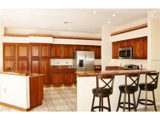 1045 Kings Way Ln, Tarpon Springs, FL 34688
