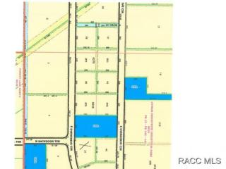 1205 East Overdrive Circle, Hernando FL