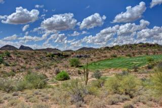 9503 North Desert Wash Trail #10, Fountain Hills AZ