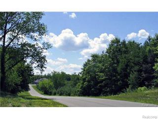 Vl Needles Lane, Brandon Township MI