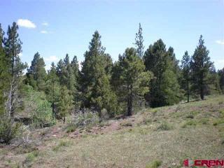 Lot 6 Scenic Mountain Ests, Del Norte CO