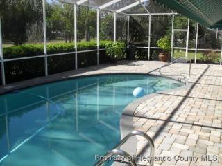 9730 Southern Belle Dr, Weeki Wachee, FL 34613