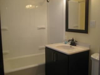 9103 S Dobson Ave #1, Chicago, IL 60619