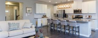 Townes at Five Forks by Ryan Homes
