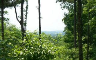 Lot 1 Ashlyn Court, Morganton GA