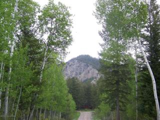 South Forest #Lot 22, Star Valley Ranch WY