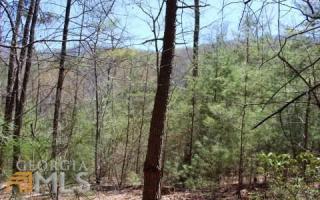 Scouts Ridge, Morganton GA