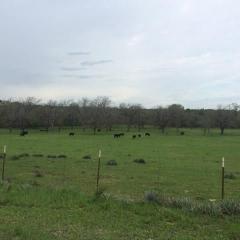 1343 Carter Road, Springtown TX