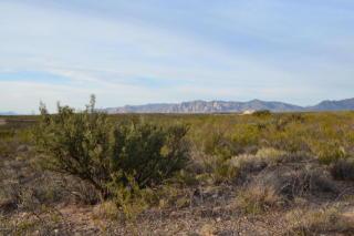 Tbd E Reed, Tombstone AZ