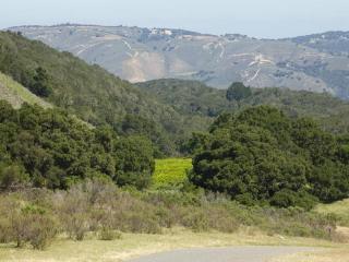 1 Mesa Trail, Carmel CA
