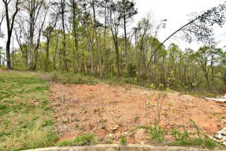 4435 Falcon Ridge Way, Knoxville TN