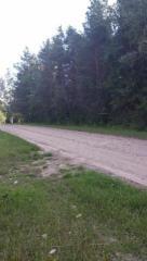 Birch Drive, Silverwood MI