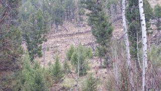 Nhn High Ore Florence 1 Lode Road, Boulder MT