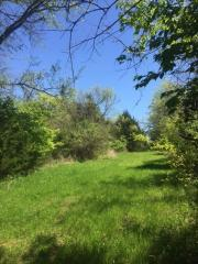 Old Charlotte Park East, Franklin TN